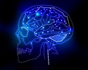 cognitive age