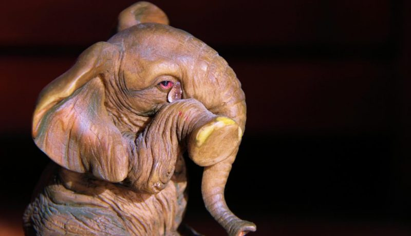 Elephant crying